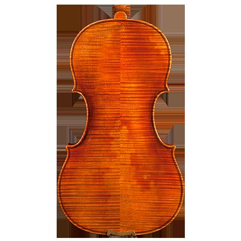 Violin by Nicol Marcasi